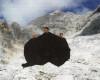 MOUNT TRIGLAV ON MOUNT TRIGLAV